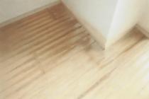 ペットのいるマンションの床状況