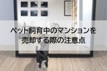 ペット飼育中のマンションを売却する際の注意点
